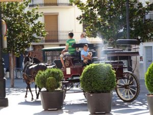 Why not treat yourselves to a horse and carriage ride after a busy day riding.